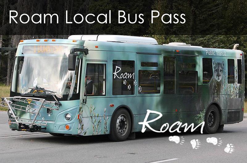 Button Image - Roam Local Pass.jpg