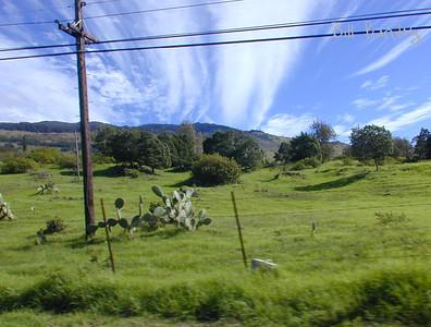 Maui, Upcountry