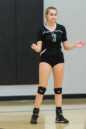 Birdville Volleyball 9-24-2016