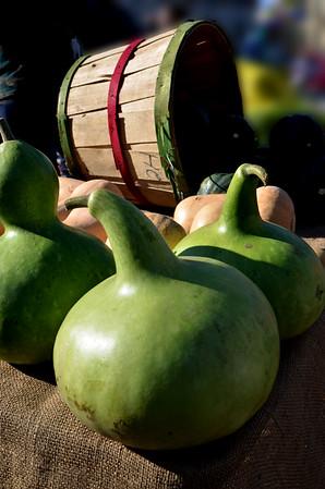 Green City Market - Halloween 2014 & Last Outside Market