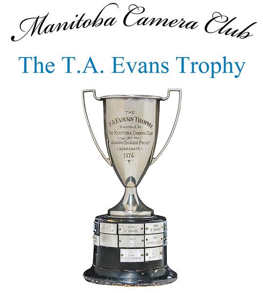 The T.A. Evans Trophy 4.jpg