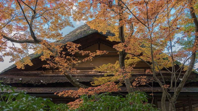 enche-japanese-garden-06.jpg