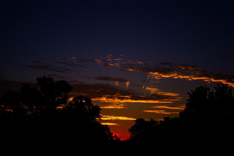 7.31.17 - Prairie Creek Recreation Area: Sunrise