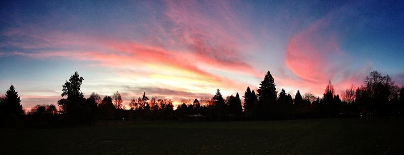 oregon morning glory (iPhoneography)