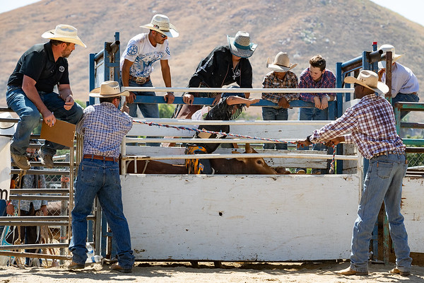 2019 Scott Mendes Bull Riding Camp