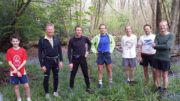 Bluebells Run 2014