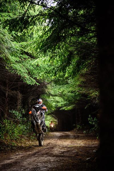 2019 KTM New Zealand Adventure Rallye (311).jpg