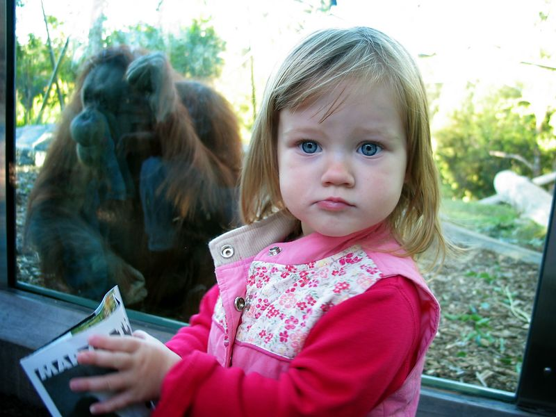 11/28 - We love going to the Zoo!