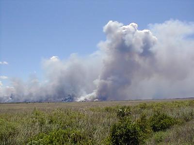 Everglades Fires - 6/19/2001