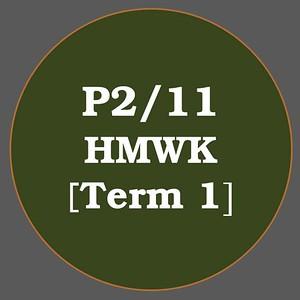 P2/11 HMWK T1