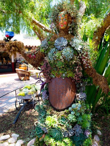 Maggie_Cal_Coll_tour-San Diego-6920-72 DPI.JPG