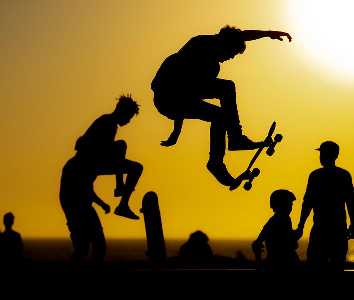 Venice Skateboard
