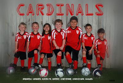 Cardinal's Soccer Team Oct-Nov 09