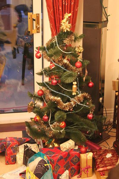 Christmas 2012 036.JPG