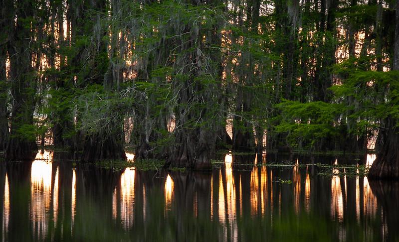 Bayou sunset, 2004