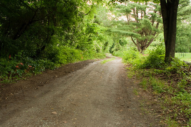 View up the driveway from the street, fiber is buried at the left.