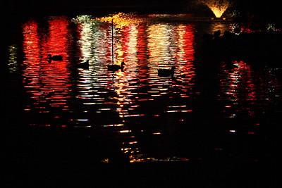 Night Scenes in the Park