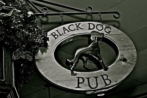 Black Dog Xmas 09