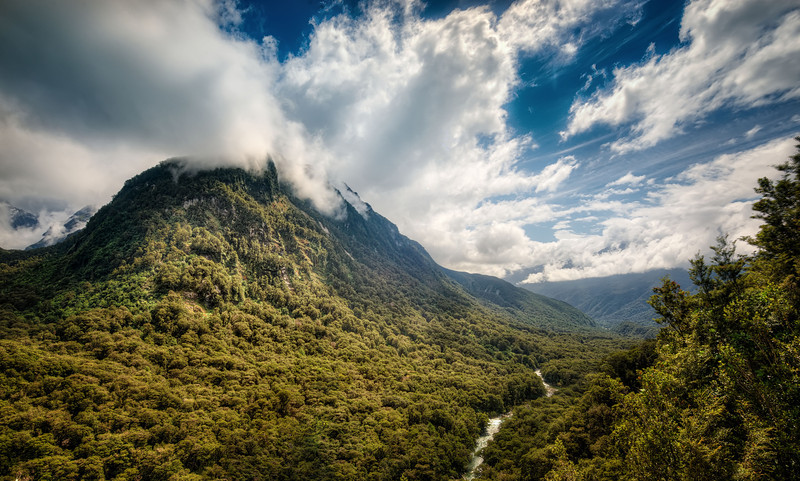Along the Road to Milford sound in Fiordland national park new Zealand.
