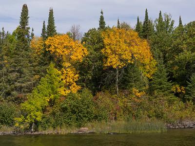 Autumn Colours at the LAKE