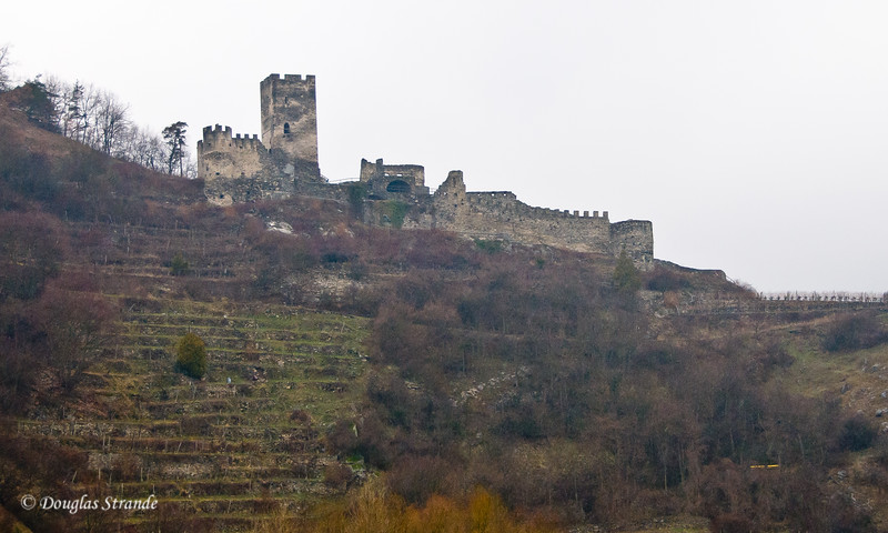 Castle and terraced vineyard along the Wachau Valley