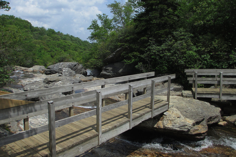 Graveyard Fields Loop Trail (5,000')