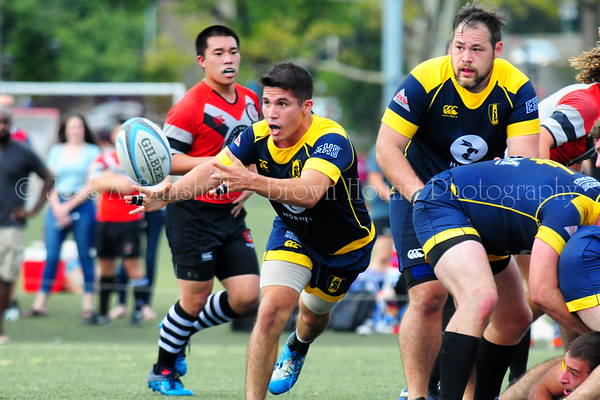 Gotham Knights vs. Village Lions Rugby, October 7, 2017