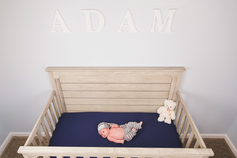AdamNoah-85.jpg