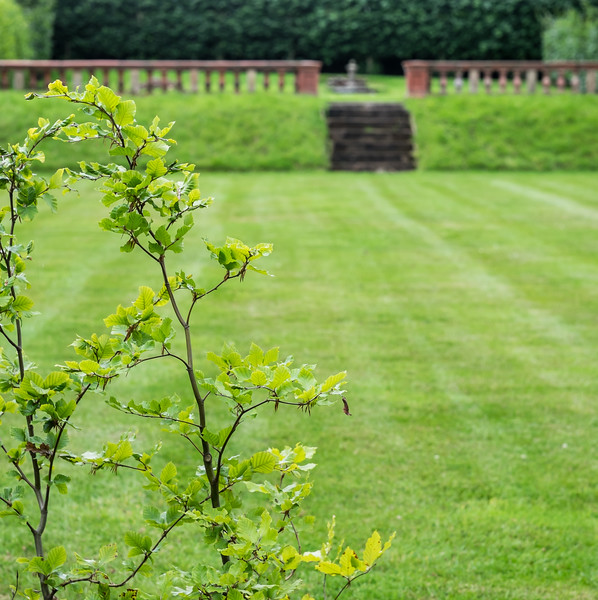 Hob Green garden-65.jpg