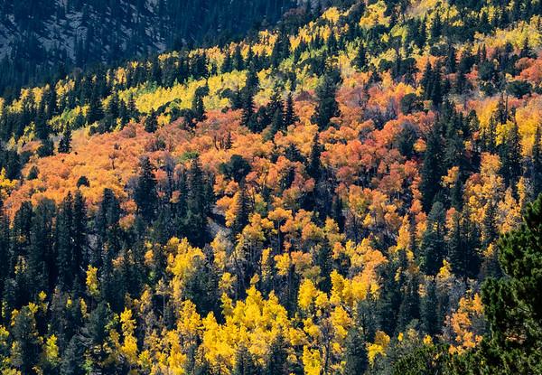 Great Basin National Park, Nevada, USA
