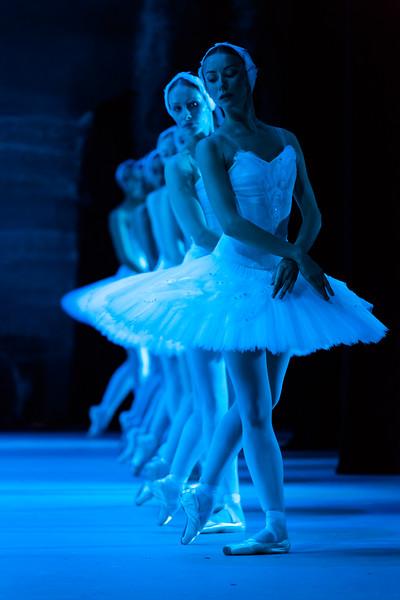 Swan Lake - Corps de Ballet