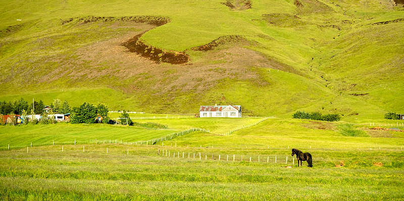 1907_Iceland-Canon_0738 web.jpg