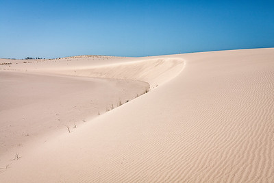 Athabasca Dunes Ecological Reserve