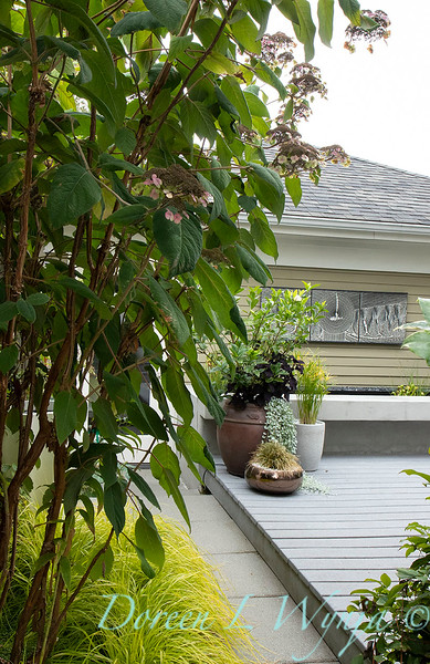 Lisa Bauer - designer's garden_1266.jpg