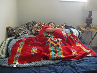 Kelli's Doggie Bed