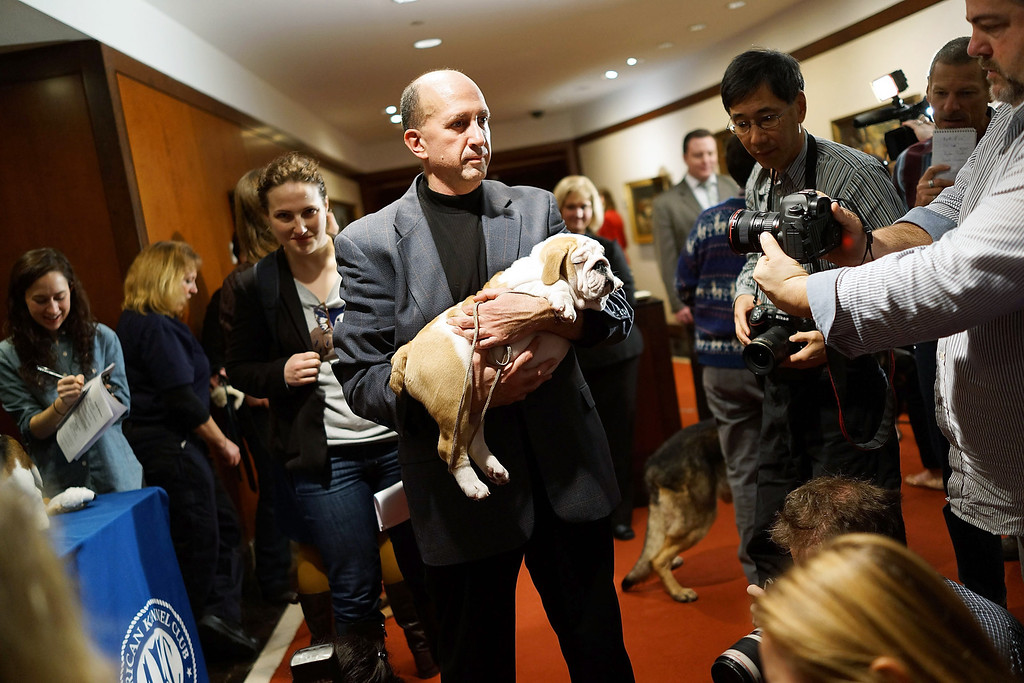 . Members of the media speak and photograph dog owners following a news conference by the American Kennel Club. (Photo by Spencer Platt/Getty Images)
