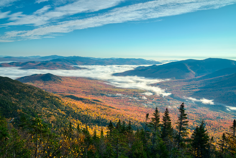 Maine Fall 2019-24.jpg