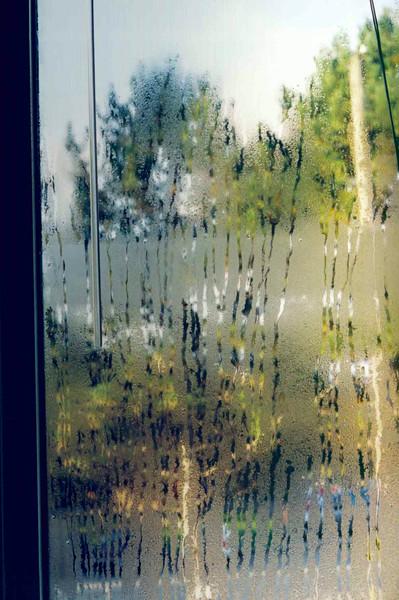 Foggy Windows.jpg