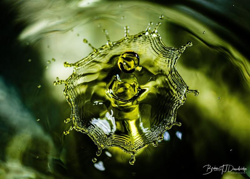 Splash_Art-1245.jpg