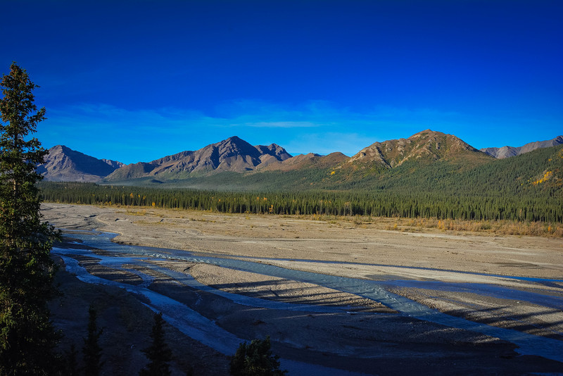 Denali-National-Park-71.jpg