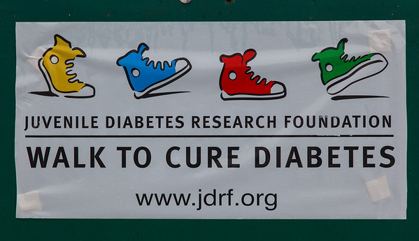 2012 JDRF Walk