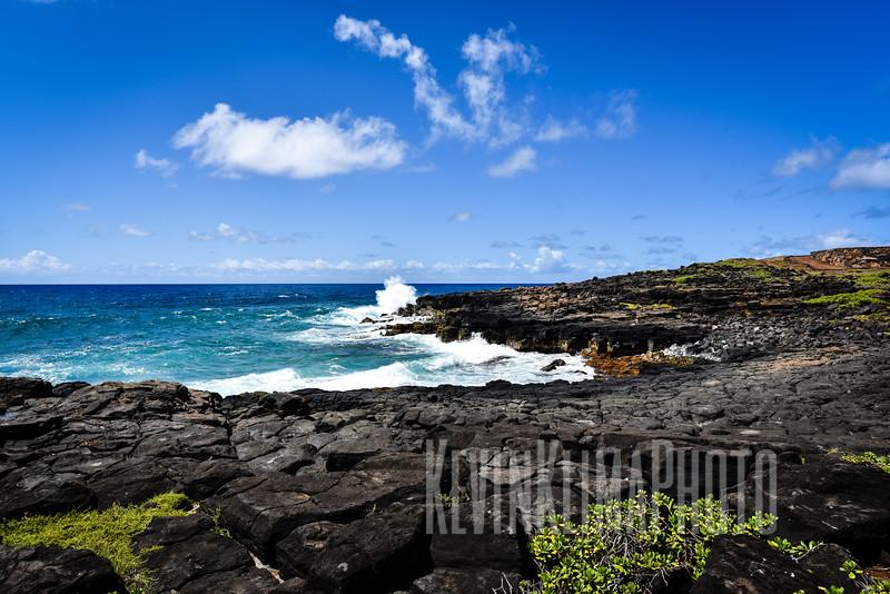 Kauai2017-300.jpg