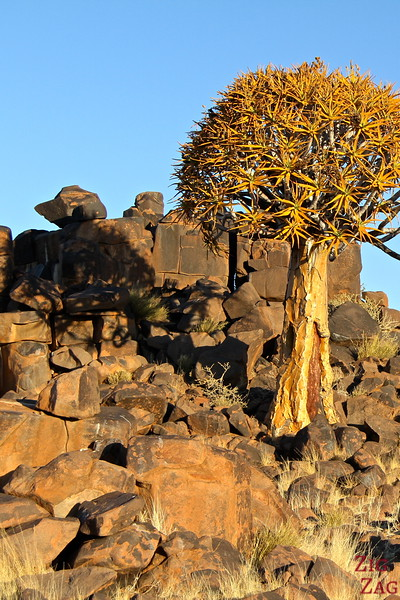 Giants playground and quiver tree, Namibia photo 4