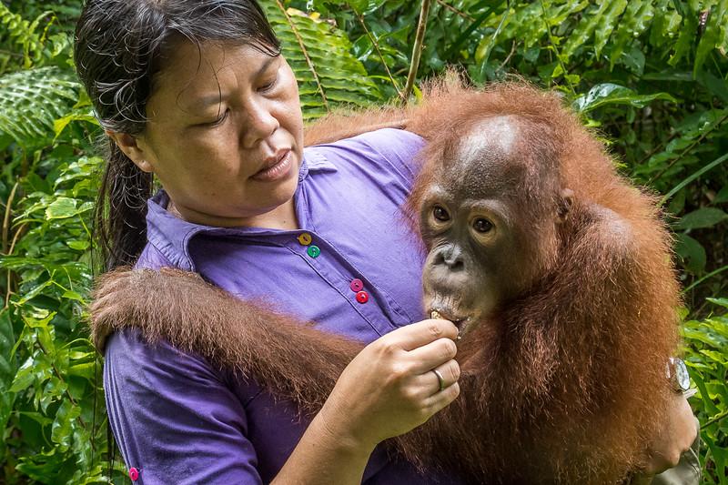 Borneo-2251.jpg
