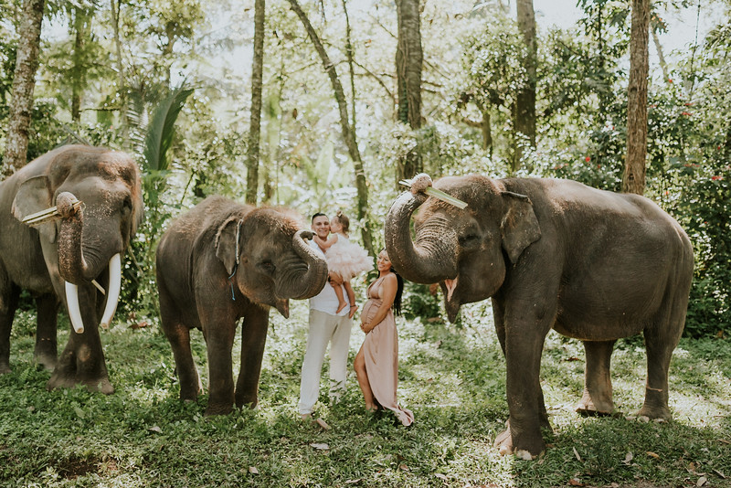 VTV_family_photoshoot_elephants_Bali_ (54).jpg