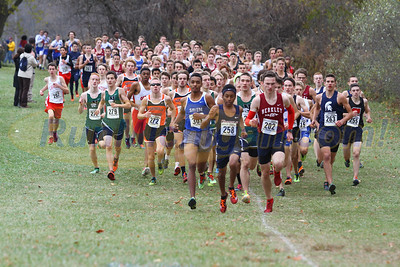 2015 MHSAA XC Regional 1-6 and 4-36 (Willow Metropark) - October 31, 2015