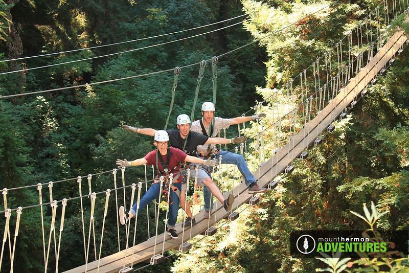 redwood_bridge_1473460028437.jpg