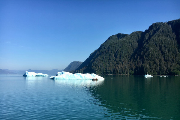 LeConte Bay, Stikine-LeConte Wilderness, Alaska
