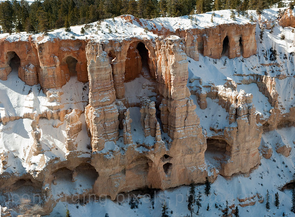 "The grottos,  visible from Bryce Point, are the result of erosion of softer pockets of the upper White Member of the Claron Formation. ""pan7"""
