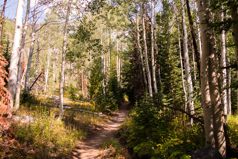 Colorado2018-MountZirkel-0011.jpg